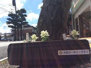 花いっぱいプロジェクト1